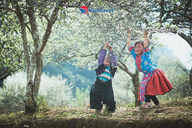 Hà Nội - Lào Cai - Sapa - Chinh phục nóc nhà Đông Dương Fansipan - Yên Tử - Hạ Long - Bái Đính - Tràng An - Tặng Vé Xe Lửa Mường Hoa (Tour Tiết Kiệm)