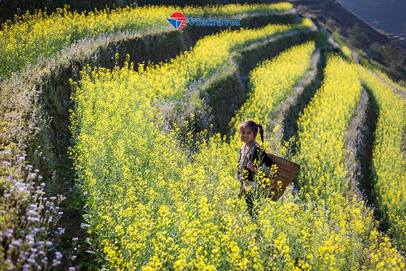 Bay cùng Vietravel Airlines: Hà Nội - Đông Tây Bắc: Nậm Ty - Nậm Hồng - Bắc Hà - Mù Cang Chải - Tú Lệ - Phú Thọ