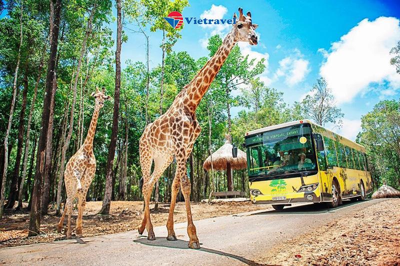 Phú Quốc - Tắm biển Bãi Sao - Thiên đường giải trí VinWonders - Vườn thú Safari (đi về tàu, KS 3 sao) -Đặc biệt thưởng thức 1 buổi hải sản
