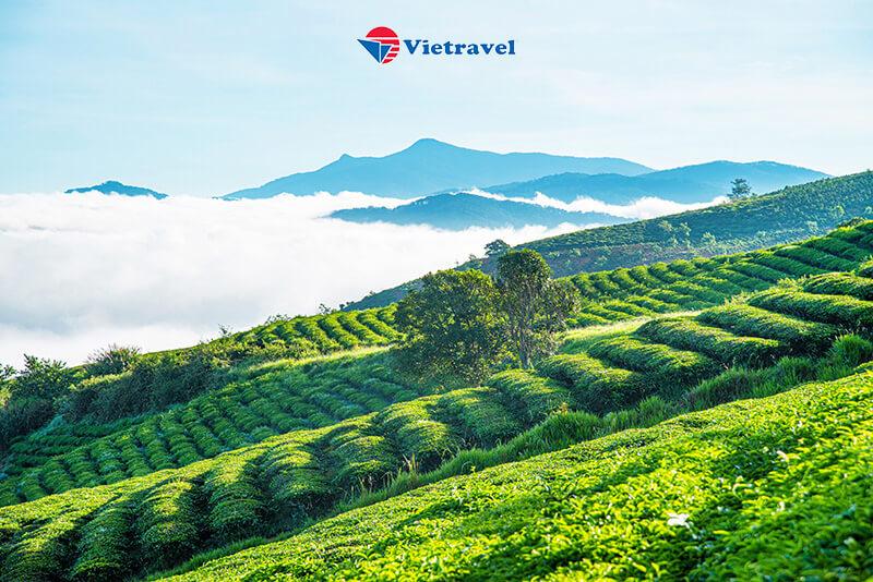Bảo Lộc - Madagui - Tuyệt Tác Hồ Tà Đùng - Nghỉ dưỡng Tà Đùng Top View