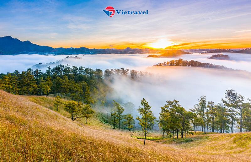 Huế - Thành phố Ngàn Hoa Đà Lạt - Que Garden - checkin Tulutula coffe - Fairytale Land - Puppy Farm 3N2Đ - Bay thẳng cùng Vietnam Airlines