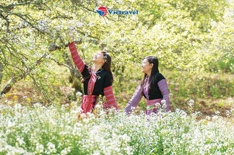 Bay cùng Vietravel Airlines: Hà Nội - Tây Bắc: Nghĩa Lộ - Tú Lệ - Mù Cang Chải - Yên Bái - Sapa - Điện Biên - Sơn La - Mộc Châu (D)