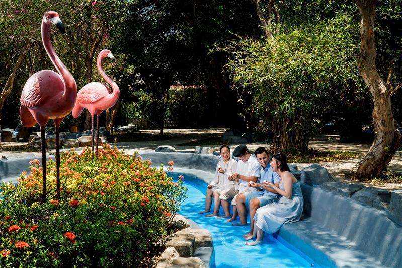 Khám phá Bình Châu - Thư giãn với suối khoáng nóng Minera - Tặng gói trải nghiệm dịch vụ VIP (Nhóm 8 khách)
